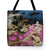 Purple Carpet And The Gulls Tote Bag