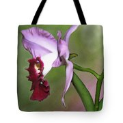 Purple Cattleya Orchid In Profile Tote Bag
