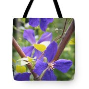 Purple Clematis Clinging On A Fence Tote Bag