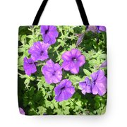 Petunias Purple Club Tote Bag