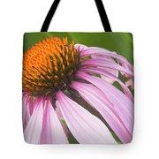 Purple Cone Flower Echinacea Tote Bag