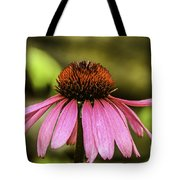 Purple Coneflower - Single Tote Bag
