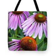 Purple Coneflowers - D007649a Tote Bag