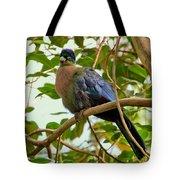 Purple-crested Touraco Tote Bag