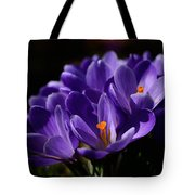 Purple Crocuses On A Spring Day Tote Bag