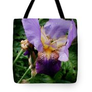 Purple Flower After Rainfall Tote Bag by Doc Braham