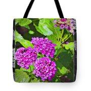 Purple Flowers A Tote Bag