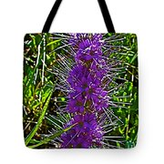 Purple Fringe On Bald Mountain In Ketchum-idaho Tote Bag