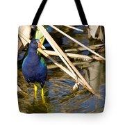 Purple Gallinule 4 Tote Bag