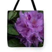 Purple Glory Tote Bag