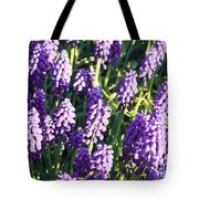 Purple Grape Hyacinth  Tote Bag