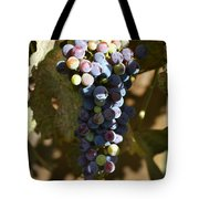 Purple Grapes Tote Bag