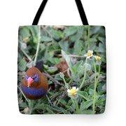 Purple Grenadier  Tote Bag