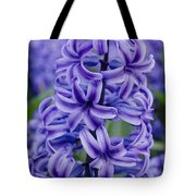 Purple Hyacinth Tote Bag
