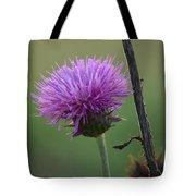 Purple In Nature Tote Bag