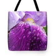 Purple Iris - 2 Tote Bag