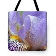 Purple Iris - 3 Tote Bag