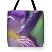 Purple Iris 1 Tote Bag