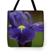 Purple Iris 6 Tote Bag