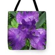 Purple Iris After The Rain Tote Bag