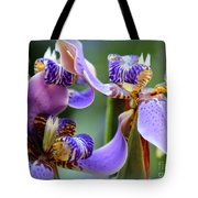 Purple Irises Closeup Tote Bag
