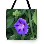 Blume-bestaubung Tote Bag