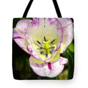 Purple Lace Tulip Time Tote Bag