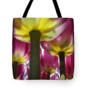 Purple Lights Tote Bag
