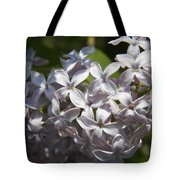 Purple Lilacs II Tote Bag
