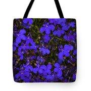 Purple Lobelia Tote Bag
