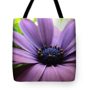Purple Mexican Flower Tote Bag