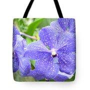 Purple Mokara Orchid Tote Bag