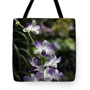 Purple Orchid Flower Inside The National Orchid Garden In Singapore Tote Bag