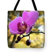 Purple Orchid In September Sun Tote Bag