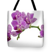 Purple Orchid-3 Tote Bag