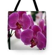 Royal Orchids  Tote Bag
