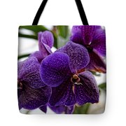 Purple Orchids Tote Bag