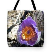 Purple Pan Gold Tote Bag