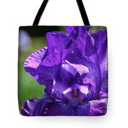 Purple Pandora Tote Bag