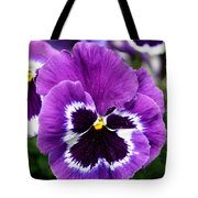 Purple Pansy Close Up Tote Bag