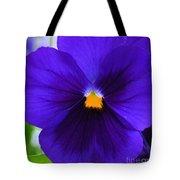 Purple Pansy Closeup Tote Bag