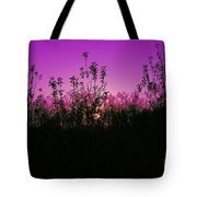 Purple Paradise Sunset By Diana Sainz Tote Bag