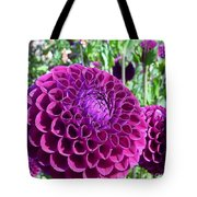 Purple Perfection Dahlia Flower Tote Bag