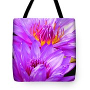 Purple Perfection Tote Bag