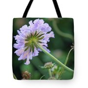 Purple Pincushion Flower Tote Bag