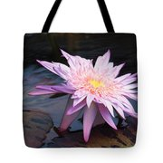 Purple Pink Yellow Waterlily... Tote Bag