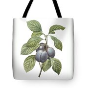 Purple Plum Tote Bag