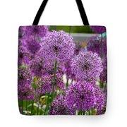 Purple Pom Poms Tote Bag