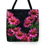 Purple Pow Echinacea  Tote Bag