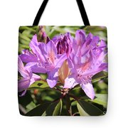 Purple Rhododendron Tote Bag